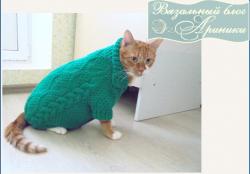 Вяжем свитер для кота